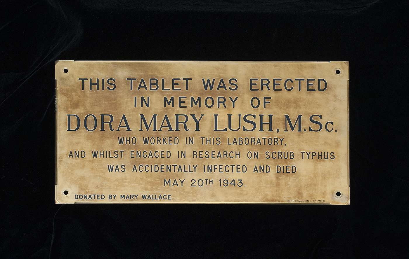 Plaque dedicated to the memory of Dora Lush (donated by Mary Wallace).