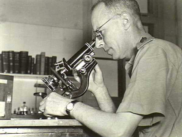 EV Keogh photographed at a microscope at the Australian General Hospital in Gaza Ridge