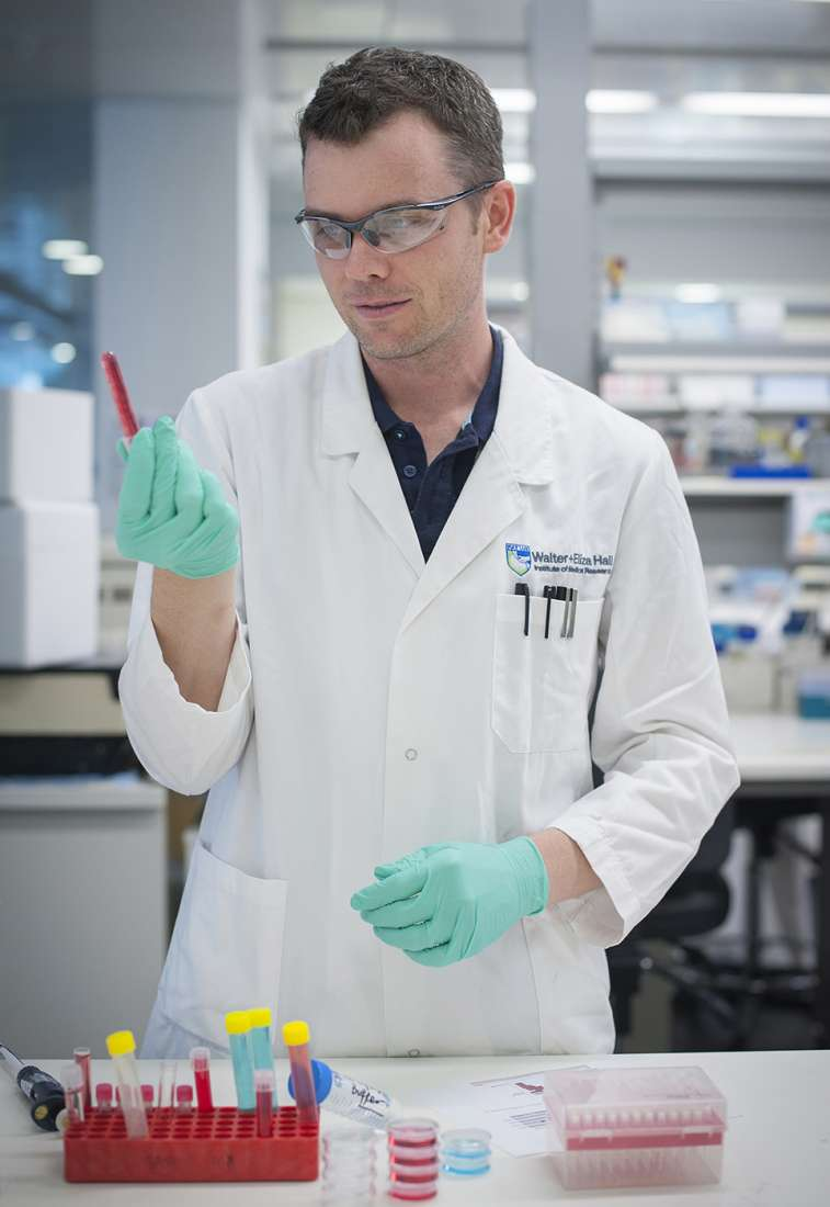 Wearing a lab coat, safety glasses and gloves, Majewski stands at a lab bench looking at a test tube.