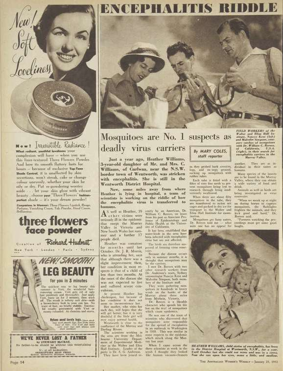 The Australian Women's Weekly report on the Murray Valley encephalitis research in January 1952 quoted Dr Bill Reeves. Reeves had travelled from the University of California to conduct encephalitis research.